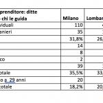 Identikit dell'imprenditore nelle ditte individuali (fonte Brescia2.it - Camera commercio MIlano) - www.brescia2.it